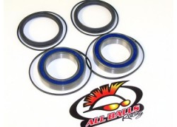 25-1320 Kit rodamientos Eje trasero ALL BALLS/QUADRACING Adly.
