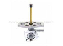 Grifo deposito gasolina Honda TRX250 TM Fourtrax 16-17, TRX250 TE Fourtrax ES 16-17, TRX250 TM Recon 02-15, TRX250 TE Recon ES 02-15, TRX250 EX 01-08