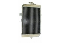 Radiador Yamaha YFM660 Raptor 01-05
