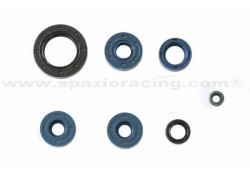Kit retenes de Motor BRP DS650 00-05