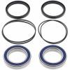 Kit rodamientos y toricas Eje trasero Honda TRX250 R/X 86-92, TRX300 EX 93-08, TRX300 X 2009, TRX400 EX 99-08, TRX400 X 09-14