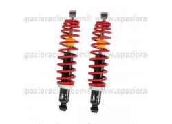 Amortiguadores traseros Polaris RZR800 08-10