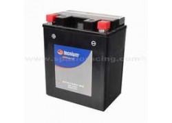 Bateria YTX14AH-BS Yamaha YFM250 Bear Tracker 99-04, YFM250 Big Bear 07-10, YFM250 Bruin 05-06, YFM350 Big Bear 87-99, YFM350 Bruin 04-06