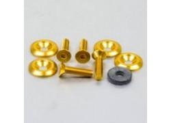 Pack 4 tornillos y arandelas avellanados M6x25mm. Dorado PRO-BOLT