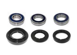 Rodamientos ruedas traseras Honda TRX450 ES/FE/FM/S Fourtrax 98-04, TRX500 FA/FE/FGA/FM/FPA/FPE/FPM/TM Rubicon 01-12