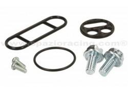 Kit reparación grifo gasoline Yamaha YFM250 Bear Tracker 99-02, YFM350 Big Bear 87-99, YFM350 Wolverine 96-01, YFM350 Warrior 87-04, YFZ350 Banshee 87-04