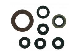 Kit retenes de Motor Kawasaki KFX400 03-06, Suzuki LT-Z400 03-13